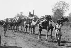 アフガンラクダ列車